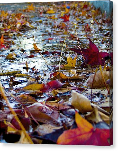 Fall Canvas Print by Jason Leonti