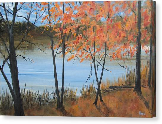 Fall N Lake Canvas Print by Pete Maier