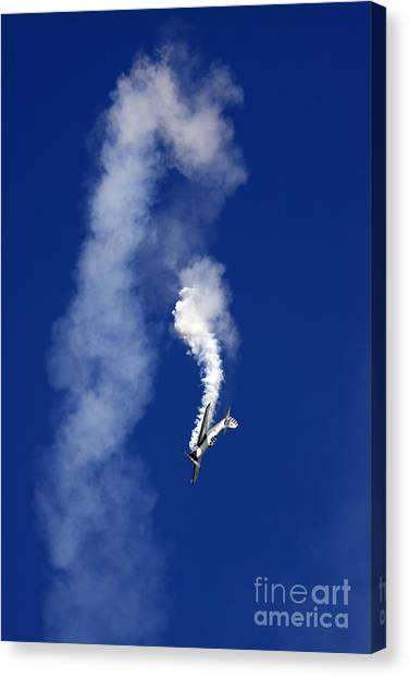 Yaks Canvas Print - Falling Down by Angel Ciesniarska