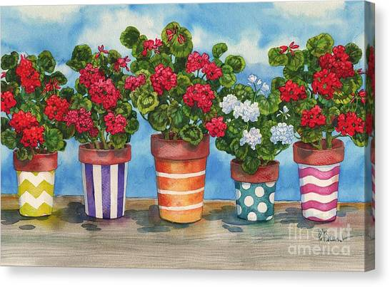 Fancy Pots Geraniums Canvas Print by Paul Brent