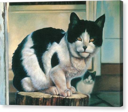 Farm Cat Canvas Print by Hans Droog