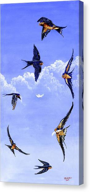 Feathers Canvas Print by Robert M Walker