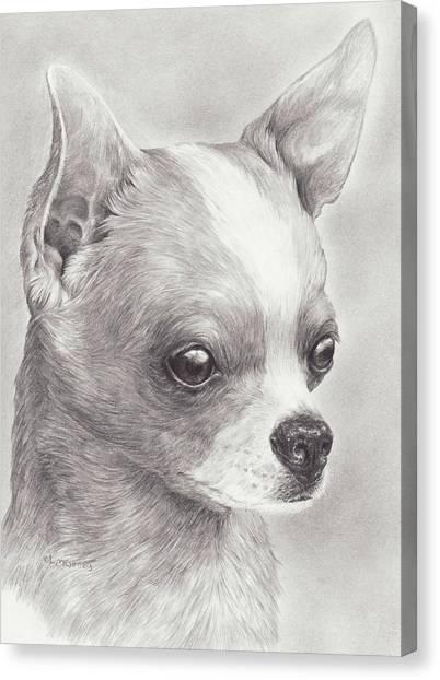Fine Chihuahua Canvas Print
