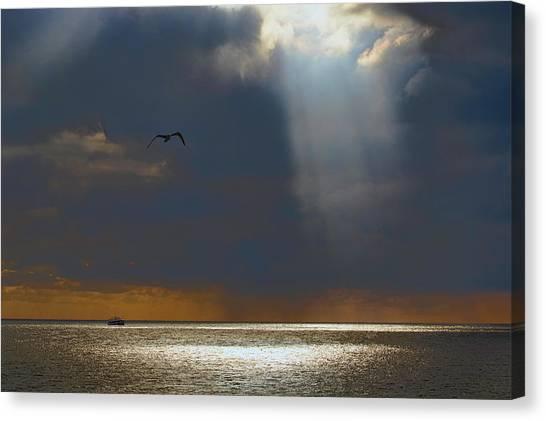 Hailstorms Canvas Print - First Light by Nadia Sanowar
