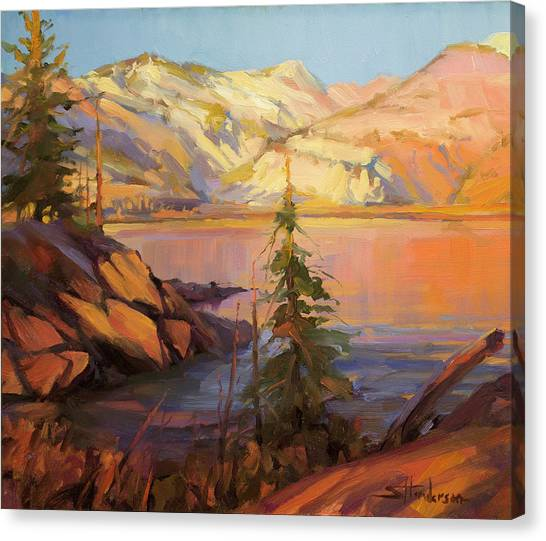 Causes Canvas Print - First Light by Steve Henderson