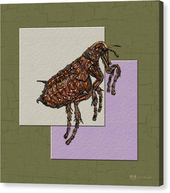 Fleas Canvas Print - Flea On Abstract Beige Lavender And Dark Khaki by Serge Averbukh