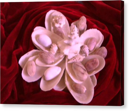 Flower Shell Canvas Print by Arlin Jules