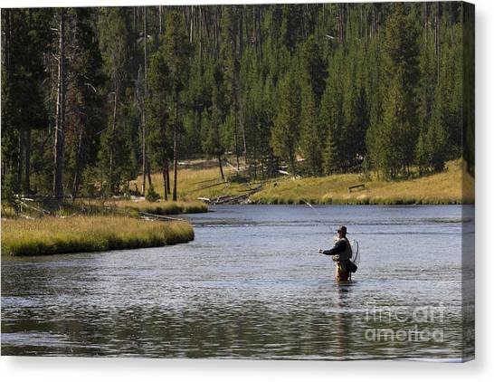 Fly Fishing Canvas Print - Fly Fishing In The Firehole River Yellowstone by Dustin K Ryan