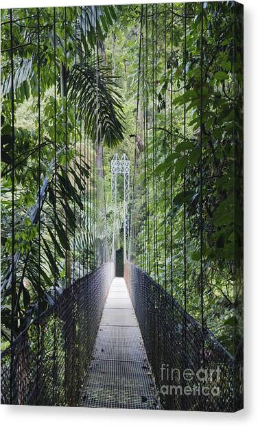 Arenal Volcano Canvas Print - Footbridge In Costa Rican Forest by Jeremy Woodhouse