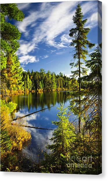 Algonquin Park Canvas Print - Forest And Sky Reflecting In Lake by Elena Elisseeva