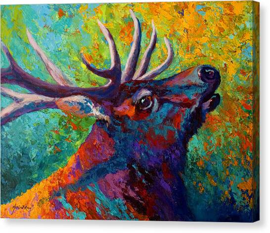 Lake Canvas Print - Forest Echo - Bull Elk by Marion Rose