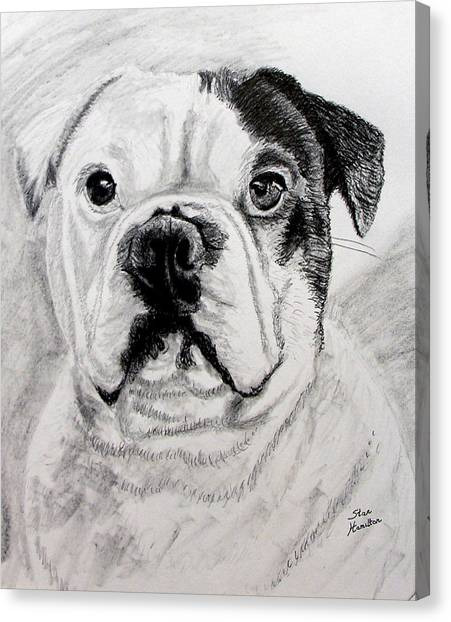 French Bull Dogs Canvas Print - French Bull Dog by Stan Hamilton
