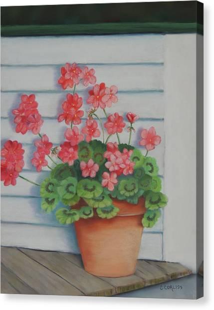 Front Porch Geraniums Canvas Print