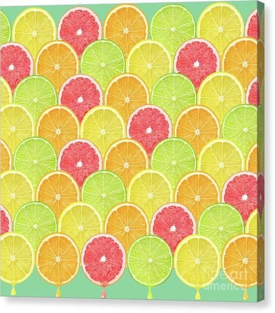 Grapefruits Canvas Print - Fresh Fruit  by Mark Ashkenazi