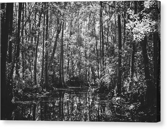Okefenokee Canvas Print - Georgia's Okefenokee Swamp by Library Of Congress