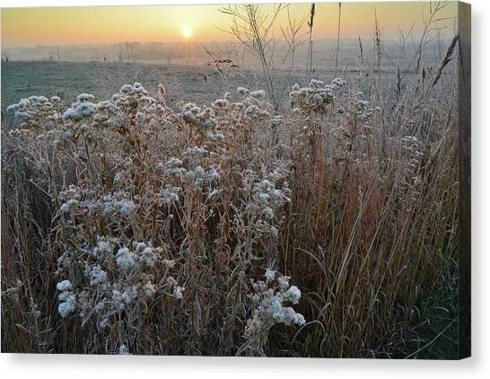 Prairie Sunrises Canvas Print - Glacial Park Foggy Sunrise by Ray Mathis