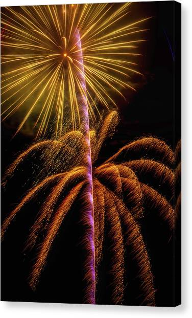 Pyrotechnic Canvas Print - Golden Fireworks by Garry Gay