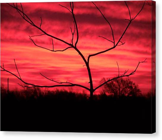 Good Evening Canvas Print by Evelyn Patrick