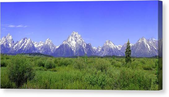 Grand Tetons Panorama Canvas Print by Mary Gaines