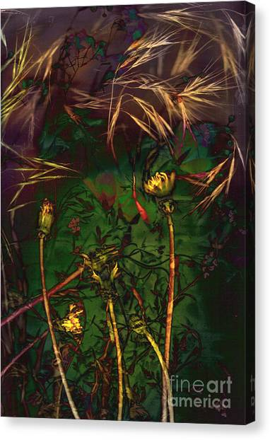 Grasslands Series No. 5 Canvas Print by Vinson Krehbiel