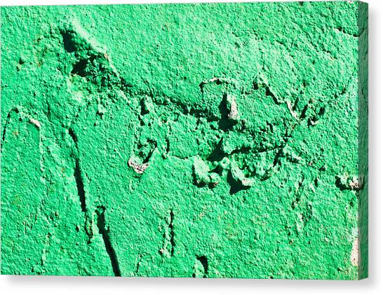 Stone Wall Canvas Print - Green Background by Tom Gowanlock