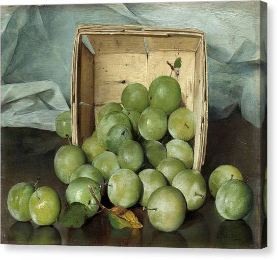 Green Plums Canvas Print