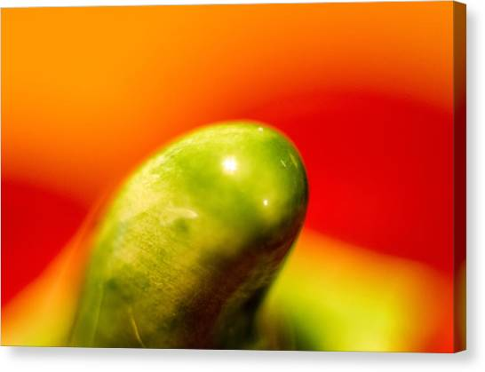 Green Red Liquid Clay Canvas Print
