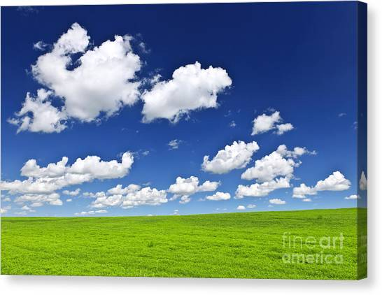 Cloud Canvas Print - Green Rolling Hills Under Blue Sky by Elena Elisseeva