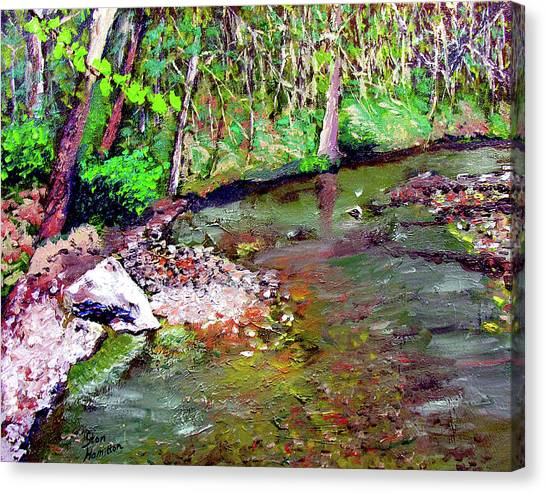Greesy Creek Canvas Print by Stan Hamilton