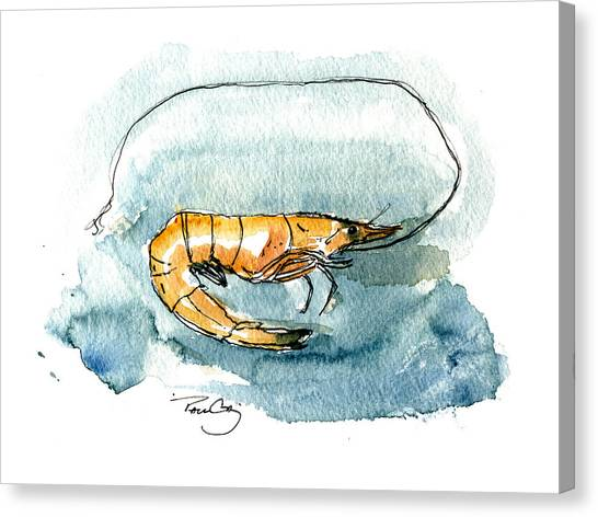 Gulf Shrimp Canvas Print