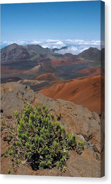 Haleakala Afternoon Canvas Print by Stephen  Vecchiotti