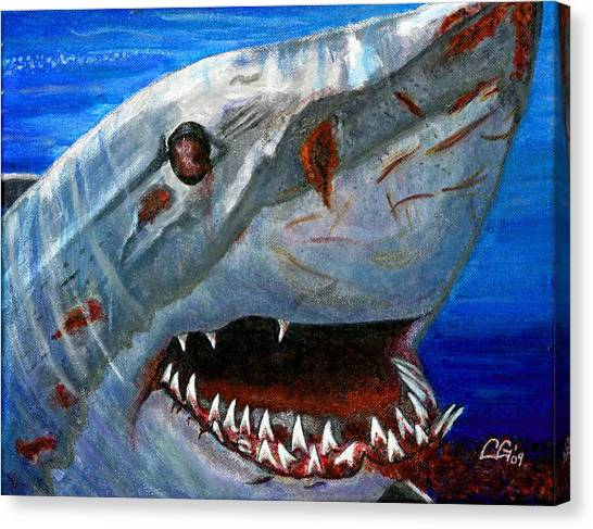 Happy Shark Canvas Print by BlondeRoots Productions