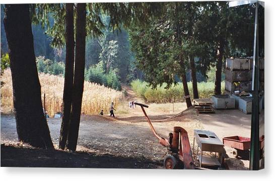 Harvest Time At Apple Hill Canvas Print by Dawn Marie Black