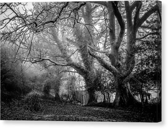 Haunted House Canvas Print - Haunted Forest by Britten Adams