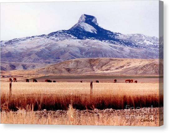 Heart Mountain - Cody,  Wyoming Canvas Print