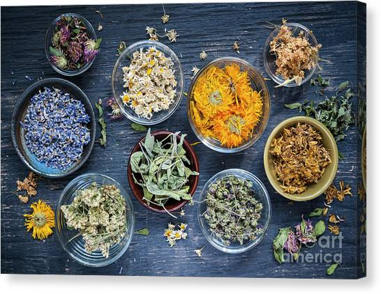 Canvas Print featuring the photograph Herbs by Elena Elisseeva