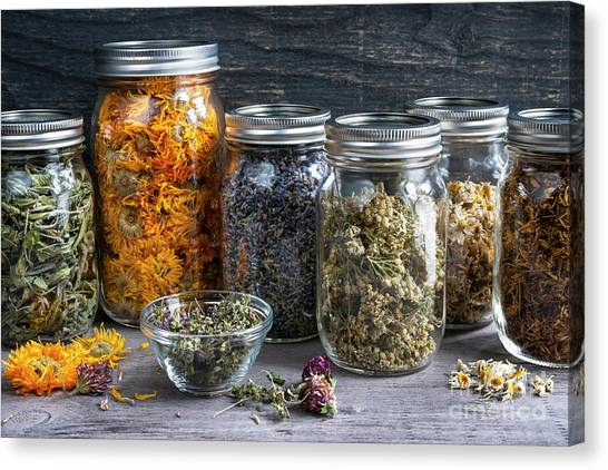 Canvas Print featuring the photograph Herbs In Jars by Elena Elisseeva