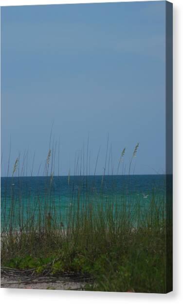 Holmes Beach Florida 2 Canvas Print by Lisa Gabrius