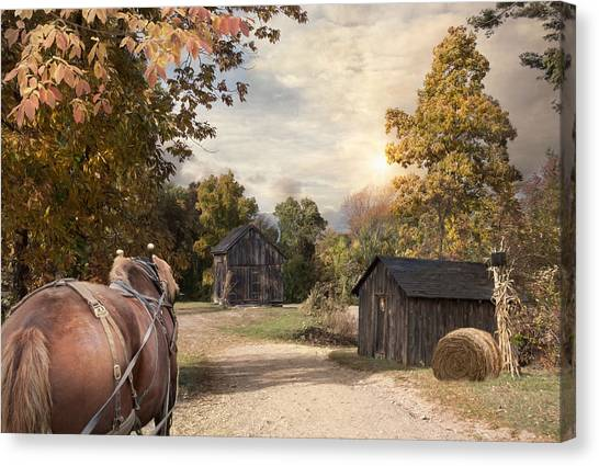 Draft Horses Canvas Print - Homeward Bound by Robin-Lee Vieira