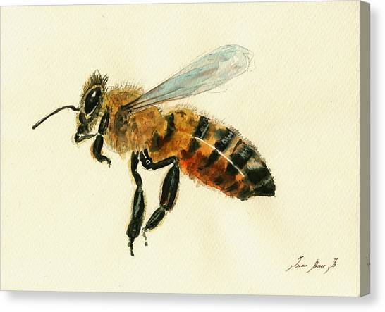 Bugs Canvas Print - Honey Bee Watercolor Painting by Juan  Bosco