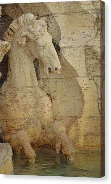 The Horse In The Fountain  Canvas Print by JAMART Photography