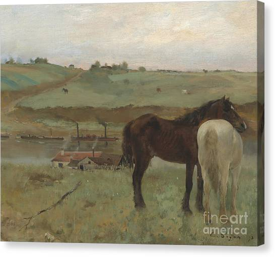 Edgar Degas Canvas Print - Horses In A Meadow by Edgar Degas