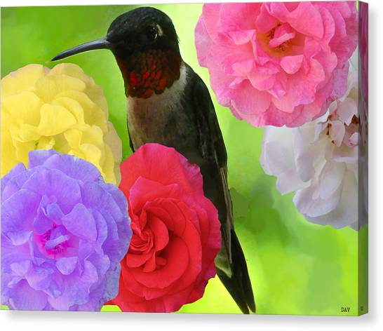 Hummingbird Flower Canvas Print by Debra     Vatalaro