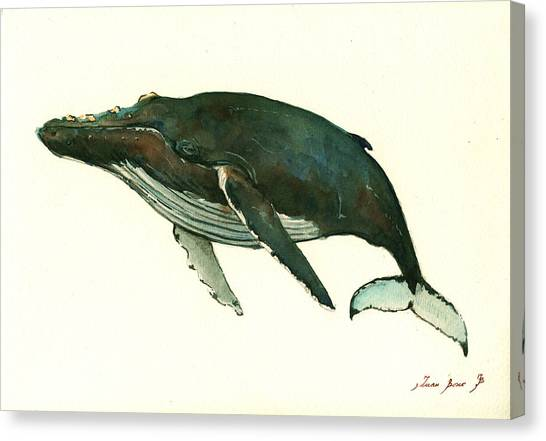 Blue Whales Canvas Print - Humpback Whale  by Juan  Bosco