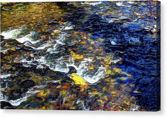 Hyalite Creek Canvas Print