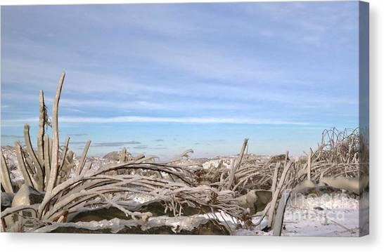 Hailstorms Canvas Print - Ice Covering The The Shoreline by Douglas Sacha