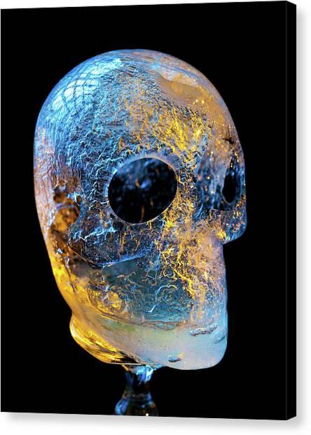 Ice Skull Canvas Print