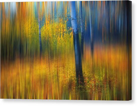 In The Golden Woods. Impressionism Canvas Print