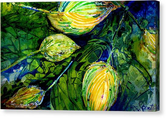 Indriel Blue Hosta Canvas Print by Mary Sonya  Conti