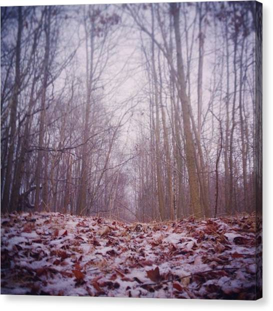 Foggy Forests Canvas Print - Into The #woods by Jessica Frech